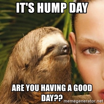 Its Hump Day Are You Having A Good Day Dirty Sloth Meme Generator