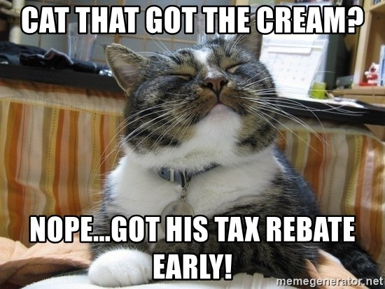 cat that got the cream nopegot his tax rebate early cat that got the cream? nope got his tax rebate early! smug