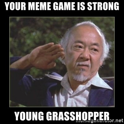 Mr. Miyagi - your meme game is strong young grasshopper