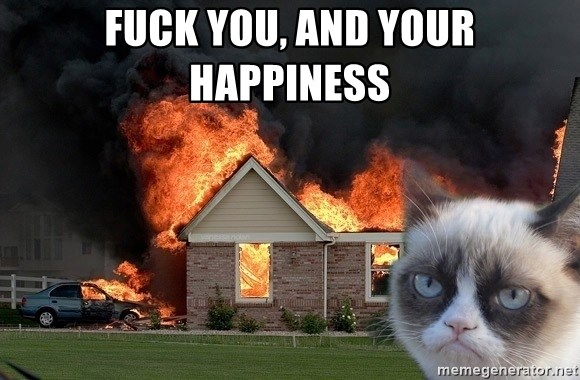 grumpy cat 8 - Fuck You, And Your Happiness