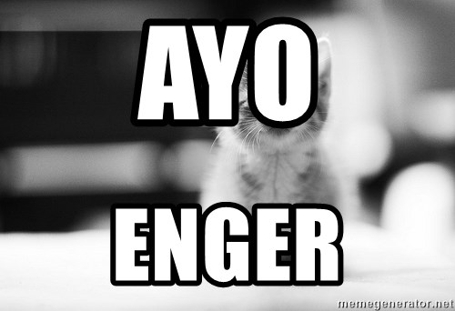 I can haz results nao? - AYO Enger