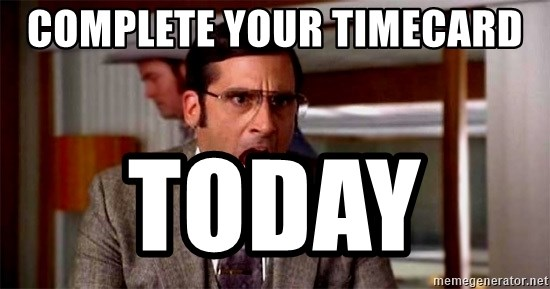 brick tamland - complete your timecard  Today