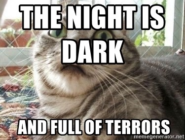 scared cat - The night is dark                     and full of terrors