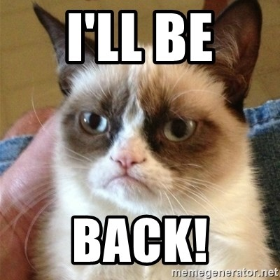 Image result for i'll be back cat meme