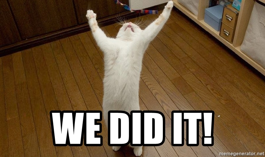 praise the lord cat - WE DID IT!