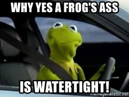 kermit the frog in car - why yes a frog's ass is watertight!