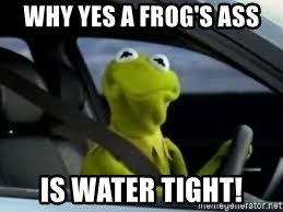 kermit the frog in car - why yes a frog's ass is water tight!