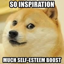 dogeee - So inspiration Much self-esteem boost