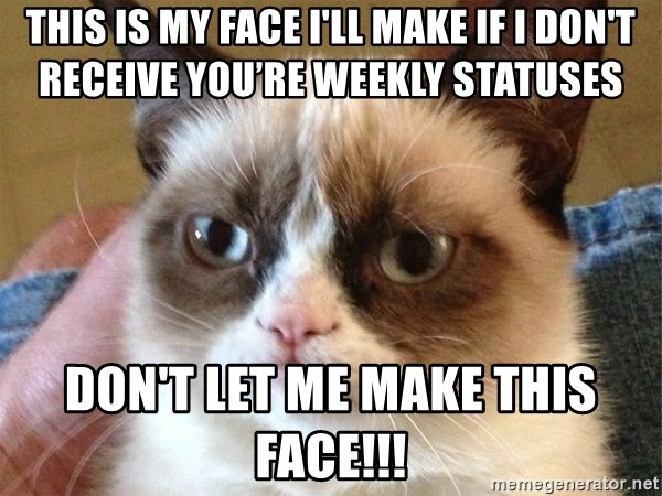 Angry Cat Meme - This is my face I'll make if I don't receive you're weekly statuses Don't let me make this face!!!