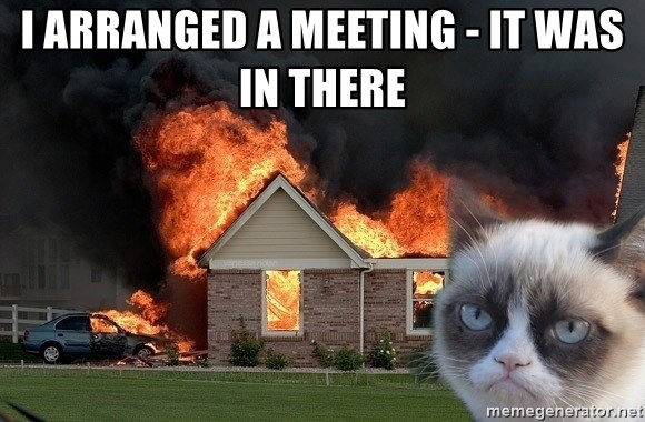 grumpy cat 8 - I arranged a meeting - it was in there