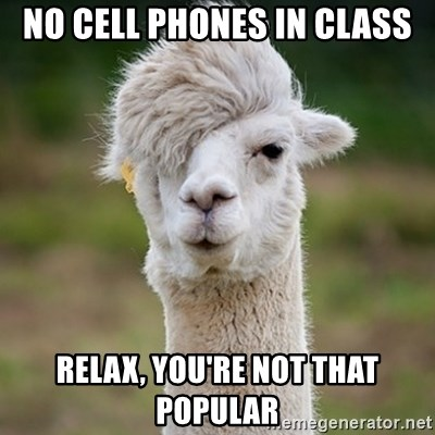 Hipster Llama - no cell phones in class relax, you're not that popular