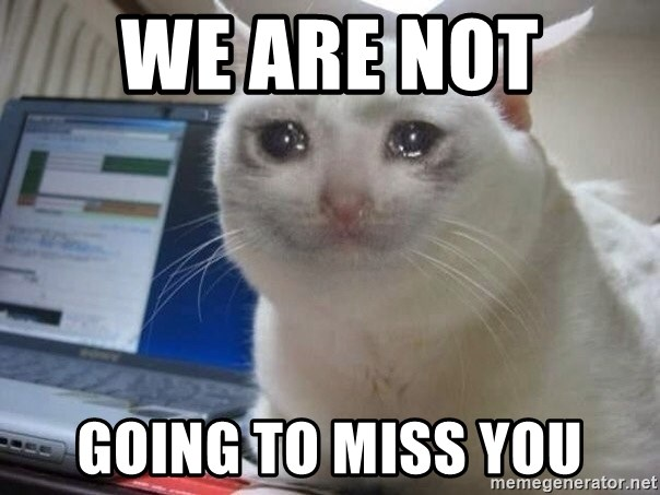 We Are Not Going To Miss You Crying Cat Meme Generator