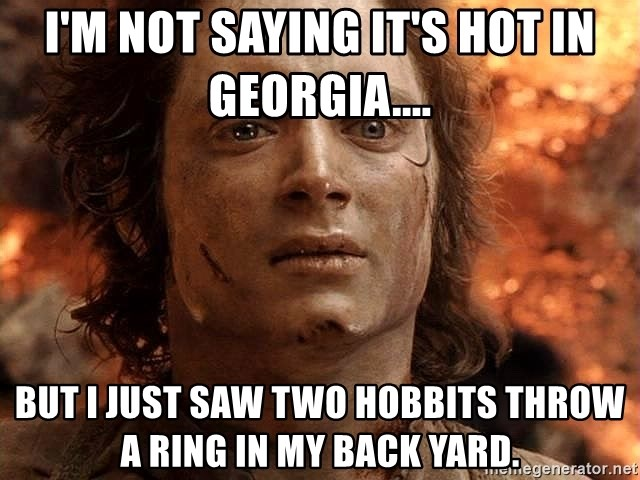 Frodo  - I'M NOT SAYING IT'S HOT IN GEORGIA.... BUT I JUST SAW TWO HOBBITS THROW A RING IN MY BACK YARD.