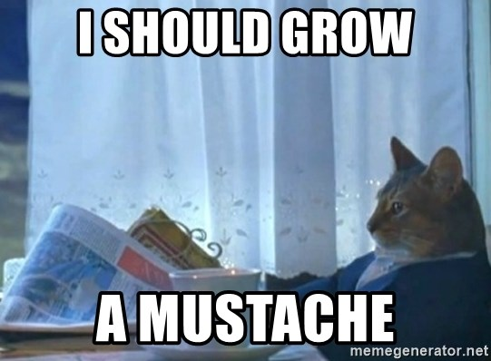 newspaper cat realization - I SHOULD GROW A MUSTACHE