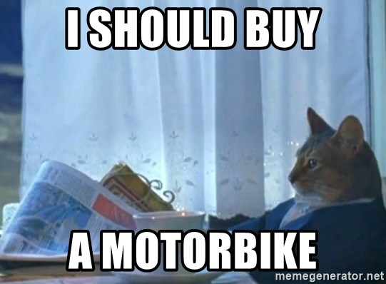 newspaper cat realization - I should buy a motorbike