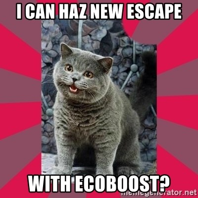 I can haz - i can haz new escape with ecoboost?