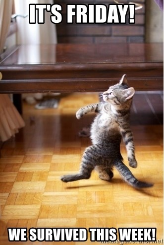 I Survived Friday >> It S Friday We Survived This Week Walking Cat Meme Generator
