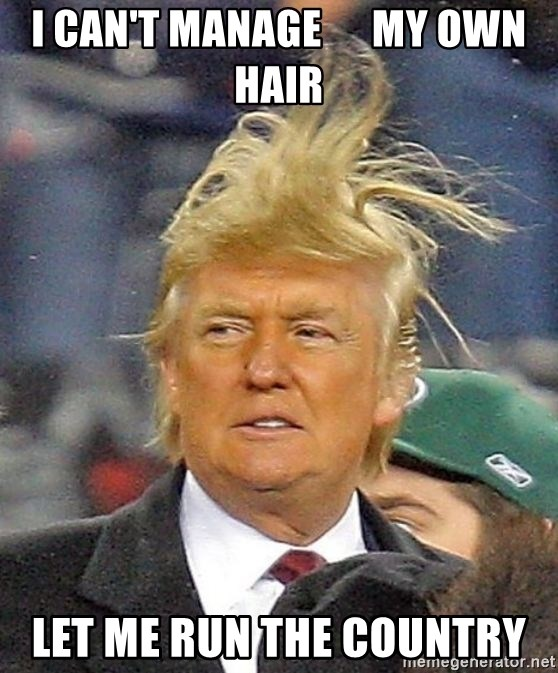 Donald Trump wild hair - I can't manage      my own hair let me run the country