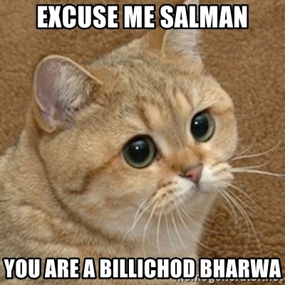 motherfucking game cat - excuse me salman you are a billichod bharwa