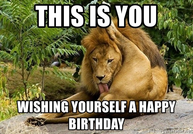 64574051 this is you wishing yourself a happy birthday lion licking his