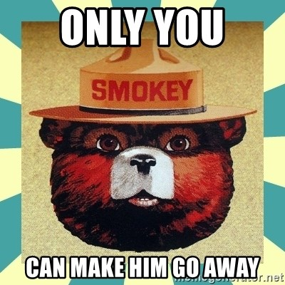Smokey the Bear - ONLY YOU  Can make him go away