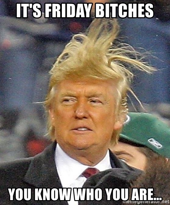 Donald Trump wild hair - IT'S FRIDAY BITCHES YOU KNOW WHO YOU ARE...