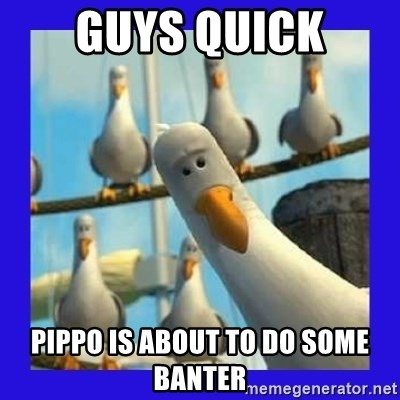 mine seagull - guys quick pippo is about to do some banter