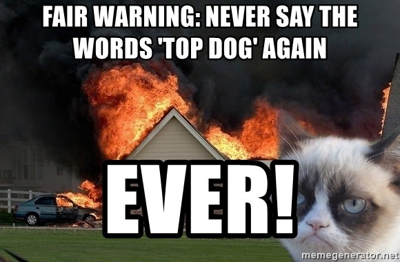 grumpy cat 8 - fair warning: never say the words 'top dog' again ever!