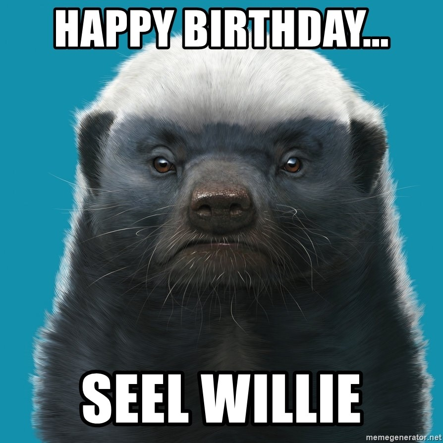 HAPPY BIRTHDAY    SEEL WILLIE - Stage Manager Badger | Meme