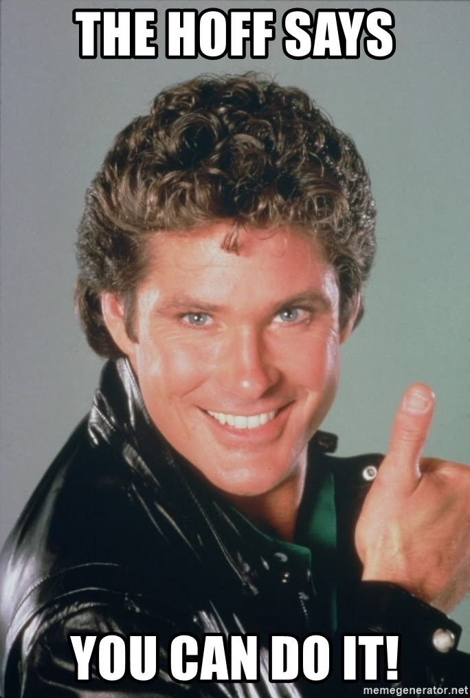 David Hasselhoff Thumbs Up - The hoff says you can do it!