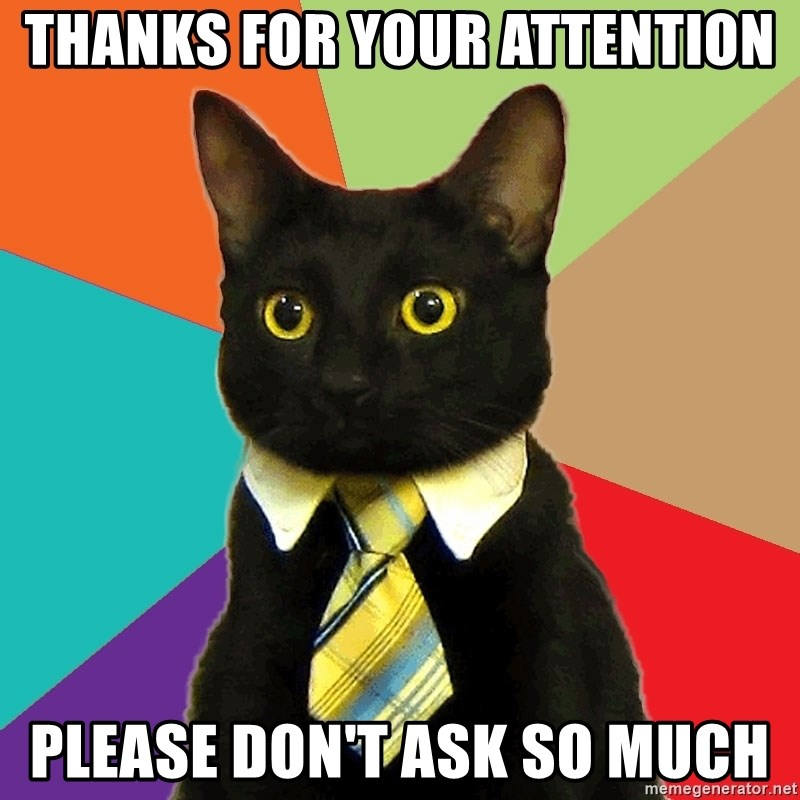 thanks for your attention please don't ask so much - Business Cat ...