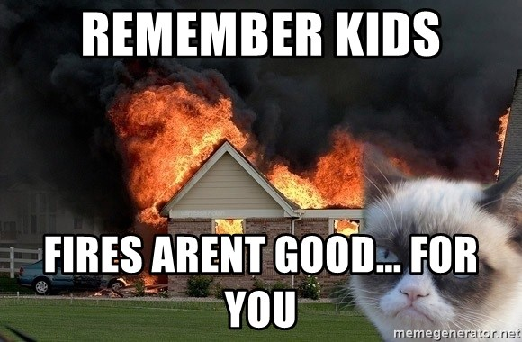 grumpy cat 8 - RemembEr kids fires arent good... for you