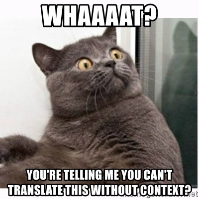 Conspiracy cat - Whaaaat? You're telling me you can't translate this without context?