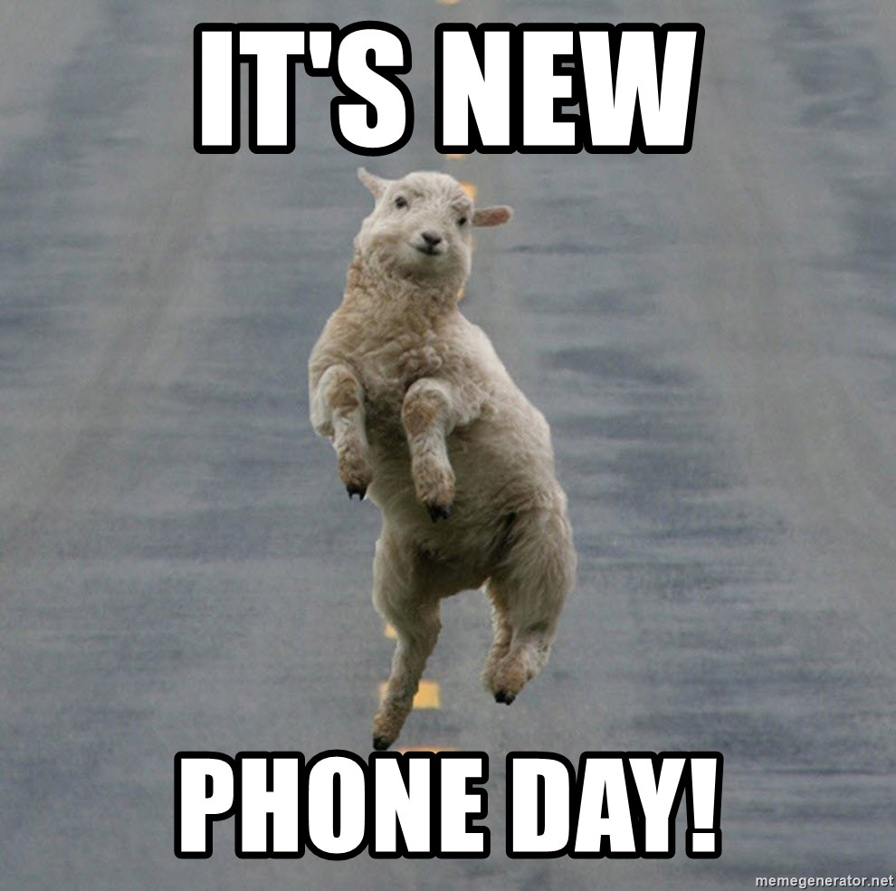 Excited Sheep - IT'S NEW PHONE DAY!