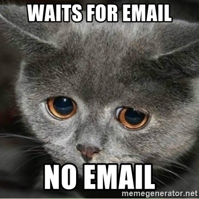 Sad Cute Cat - Waits for email no email