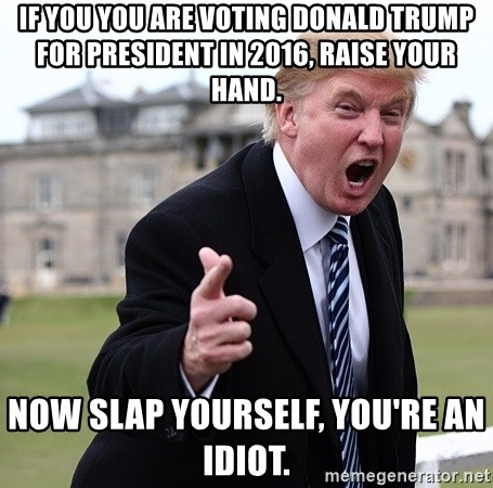 Donald Trumpeter - If you you are voting donald trump for president in 2016, raise your hand. Now slap yourself, you're an idiot.