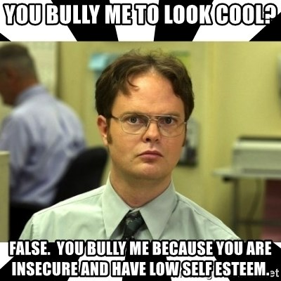 Dwight from the Office - You Bully Me To Look Cool? False.  You Bully Me Because You are Insecure and Have Low Self Esteem.