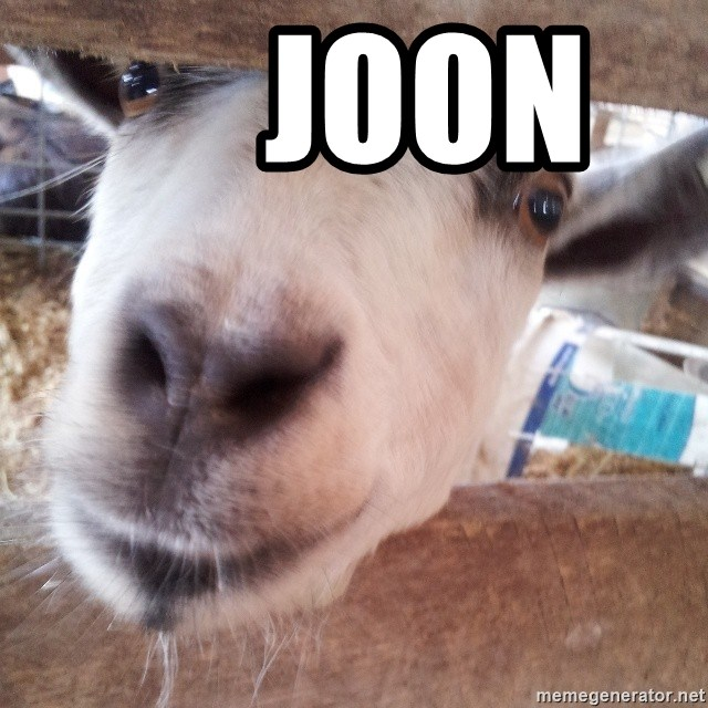Animals with song quotes - JOON