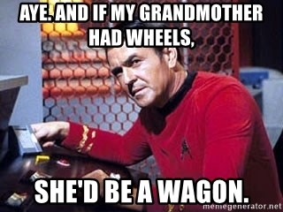 aye-and-if-my-grandmother-had-wheels-she