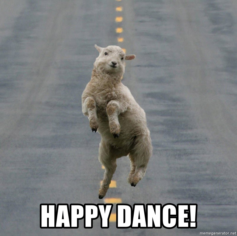 Excited Sheep -  Happy Dance!
