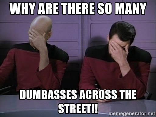 Picard-Riker Tag team - Why are there so many  dumbasses across the street!!