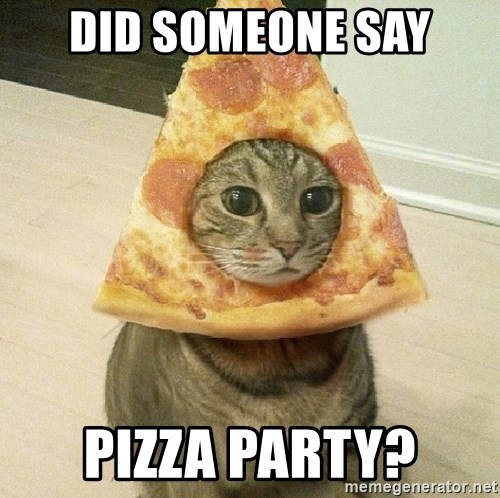 Pizza cats - did someone say pizza party?