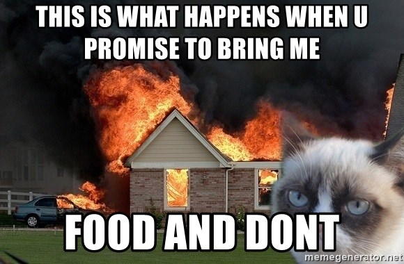 grumpy cat 8 - this is what happens when u promise to bring me food and dont