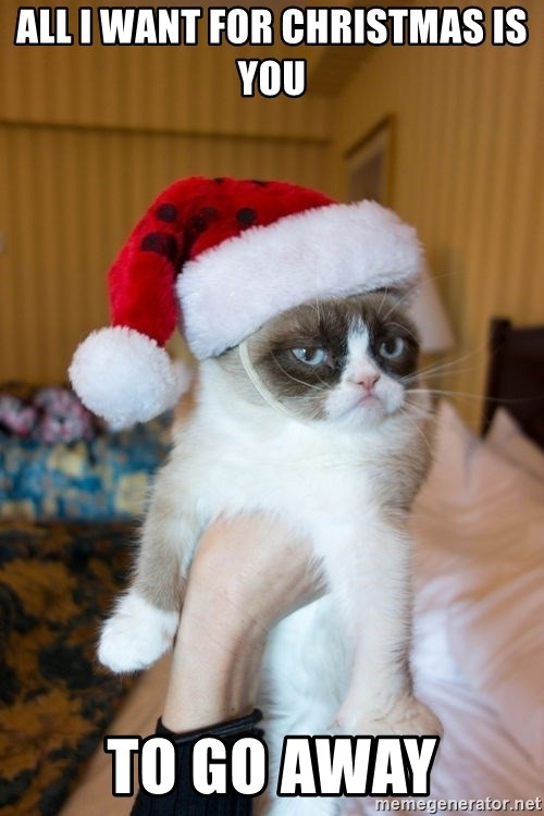 All I Want For Christmas Is You Meme.All I Want For Christmas Is You To Go Away Grumpy Cat