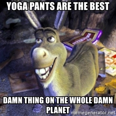 Donkey Shrek - Yoga pants are the best damn thing on the whole damn planet