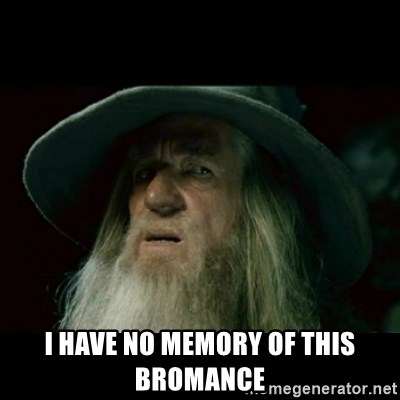no memory gandalf -  i have no memory of this bromance