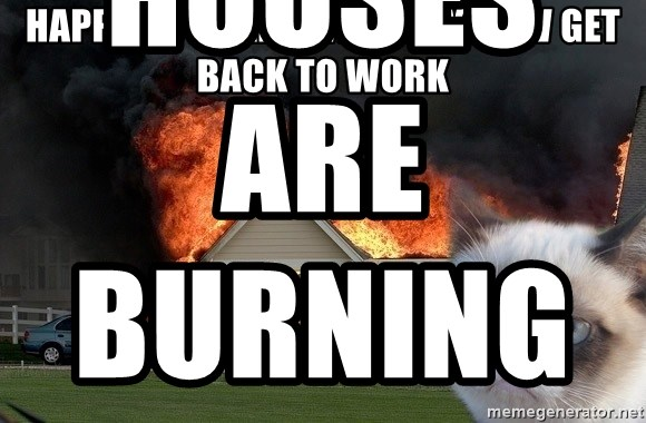 grumpy cat 8 - Happy 26th Anniversary Now Get Back to Work Houses Are Burning