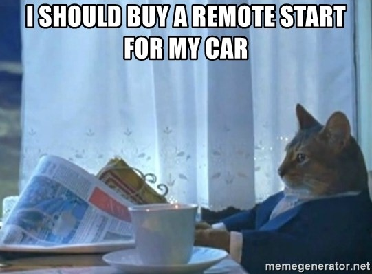 newspaper cat realization - I should buy a remote start for my car