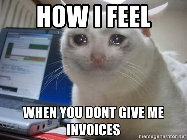 How I Feel When You Dont Give Me Invoices Crying Cat