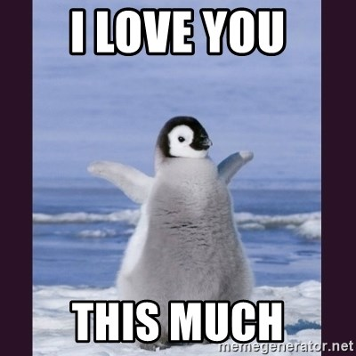 Cute Penguin - I LOVE YOU THIS MUCH